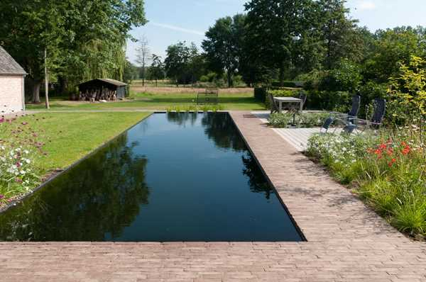Spacious landscaped garden with natural swimming pool bordered by brown clay pavers